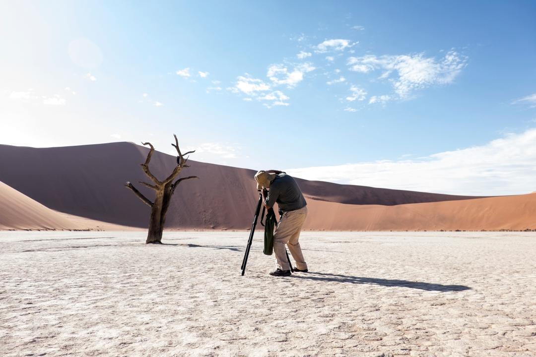 Always Summer Photo Tours & Safaris